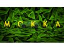 Новинка OPEL Mokka виїжджає надороги— ітепер цеелектромобіль!